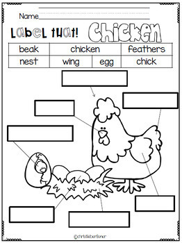 What's Hatchin' Chick? A Lil Unit About Chickens
