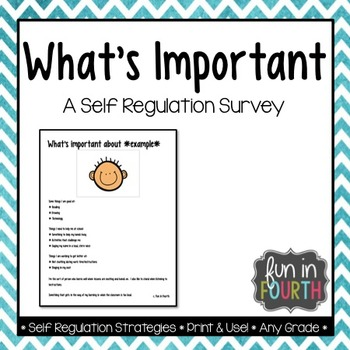 What's Important: A Self Regulation Survey