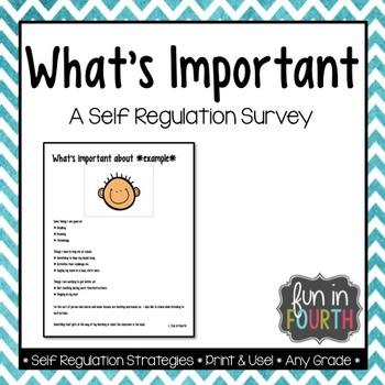 What's Important: A Self Regulation Survey