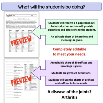 Biology Prefixes and Suffixes: Master the Science Vocabulary