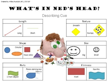 What's In Ned's Head? describing cue