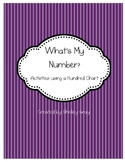 What's My Number?  ~Activities Using a Hundred Chart