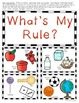What's My Rule {Sorting Activity} for Science and Math
