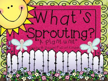 What's Sprouting? {A Plant Unit}