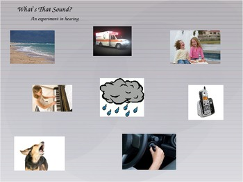 What's That Sound? 5 Senses Powerpoint & Response