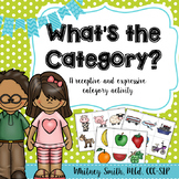 What's The Category? Receptive and Expressive Categories Activity