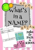 What's in a Name? (Word Sorts for Back to School and All Year Long)