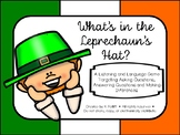 What's in the Leprechaun's Hat:  A Question & Inference Game