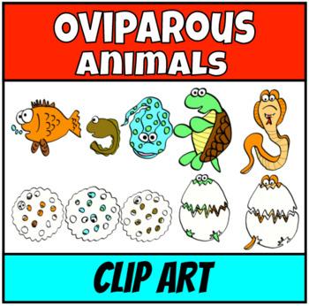 Oviparous animals Clip Art