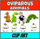 Oviparous animals Clip Art