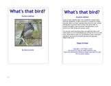 What's that Bird? Bird identification guide