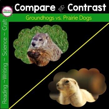 Groundhogs vs Prairie Dogs {Compare and Contrast }