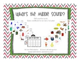 What's the Middle Sound? CVC Sorting Practice