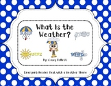 What's the Weather? {Emergent Reader Book}