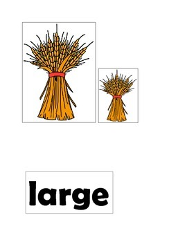 Wheat Sort by Size