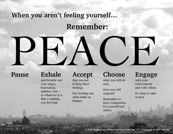When You Aren't Feeling Yourself...PEACE Poster - Middle High Sch Students City
