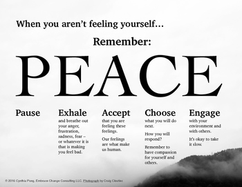 When You Aren't Feeling Yourself...PEACE Poster - Middle High Sch Students Mtn