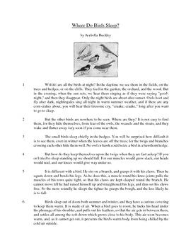 Where Do Birds Sleep? - Informational Text Test Prep