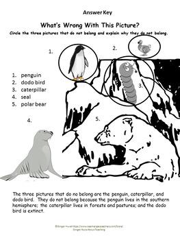 Where Do Polar Bears Live? Graphic Organizers and Printables