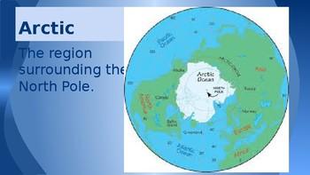Where Do Polar Bears Live? Vocabulary Powerpoint