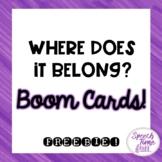 Where Does It Belong? Boom Cards™️ FREEBIE