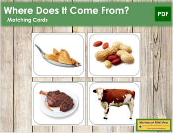 Where Does It Come From? Set 2