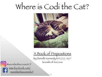 Where Is Codi The Cat? Prepositions