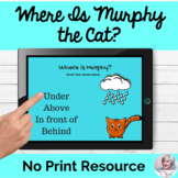 Where Is Murphy the Cat? Locational Concepts Language Less