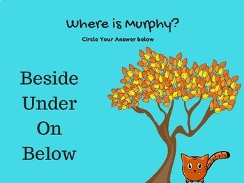 Where Is Murphy the Cat? Locational Concepts Lesson Teletherapy NO PRINT
