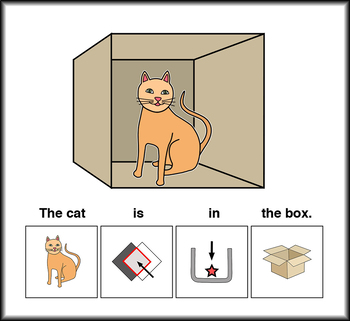 Where Is The Cat - 1 - Concepts In Context