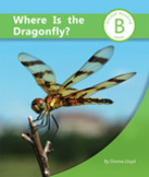 Where Is the Dragonfly?
