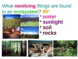 Where Living Things Are Found: Ecosystem Unit