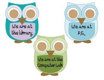 Where are we? Owls