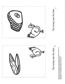 What did the Turkey See?-mini book