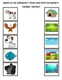 Where do the animals live?
