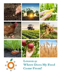 Nutrition Health Lesson: Where does my food come from?