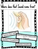 Where does that sound come from? Hearing and Sound