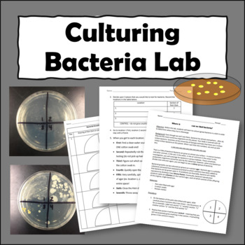 Where in our school can we find bacteria?