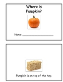 Where is Pumpkin? Book of Prepositions
