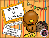 Where is Turkey?  Spatial Concepts