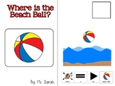 Where is the Beach Ball? Positional Concepts Book