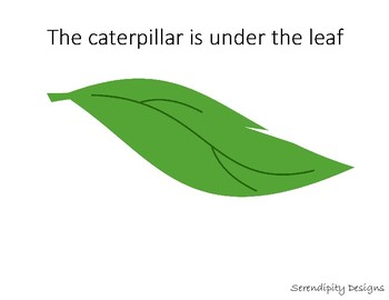 Where is the Caterpillar?   IN, ON, UNDER, NEXT TO [[INTERACTIVE]]