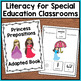 Prepositions Adapted Book: Where is the Princess? (Special Education)