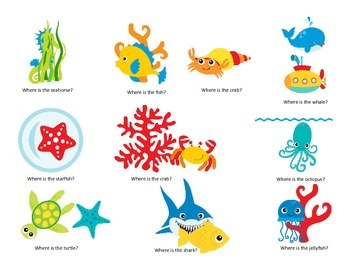 Where is the ocean animal