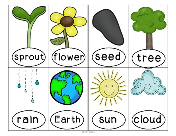 Where the Green Grass Grows: Math, Literacy, and Science Activities