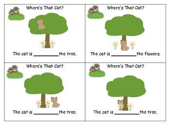 Where's The Cat- Preposition Hunt