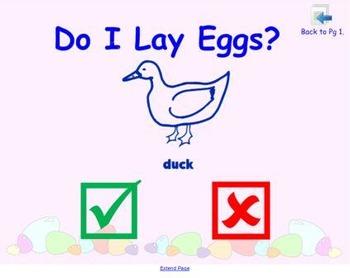 Which Animals Lay Eggs? Activity Game/ Quiz