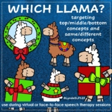 Which Christmas Llama - Targeting top middle bottom + same
