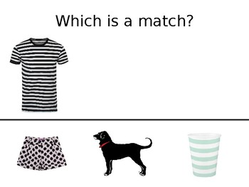 Which Is a Match? Interactive Board