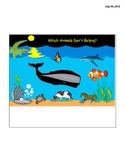 Which Ocean Animals Do Not Belong